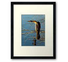 I Swear, Detective, He Went That Way ! Framed Print