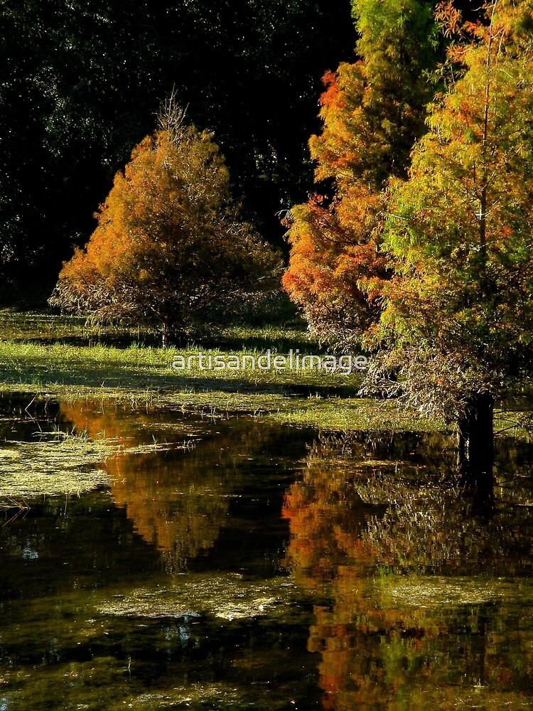 Autumnal Splendor ~ Part One by artisandelimage