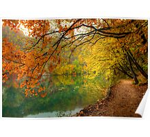 Autumn in Plitvice Poster