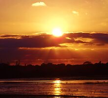 Golden Sunset by Vanessa Saxby