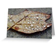 Autumn Orbs Greeting Card