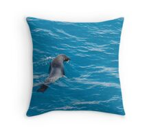 Fur Seal in the pristine waters of Fortuna Bay, South Georgia Throw Pillow