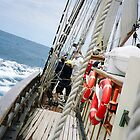 Sailing to Tasmania by tunna