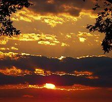 Sundown Splendor by Kate Eller