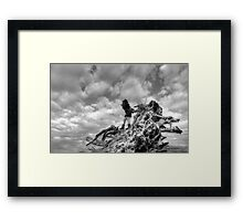 Surreal Photographer Framed Print