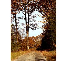 Autumn in Southern Illinois Photographic Print