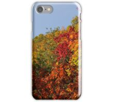 Hills Of Fire iPhone Case/Skin