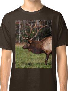 Royal Master Classic T-Shirt