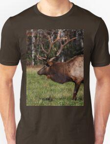 Royal Master Unisex T-Shirt