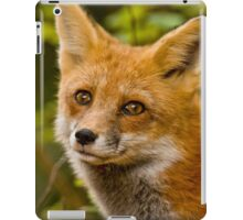 Fox Images iPad Case/Skin