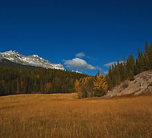 Fall into October by Keri Harrish