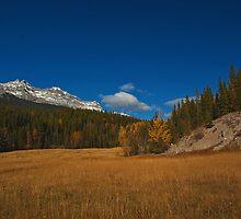 Fall into October by Keri Harrish