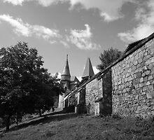 Vajdahunyadi vár III (castle)  by zumi