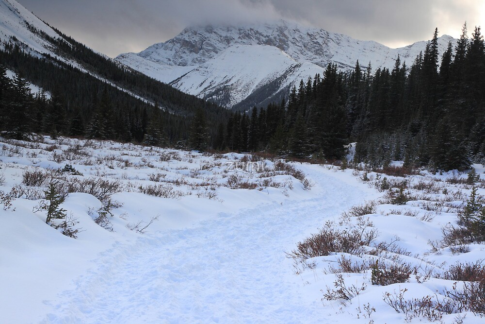 Elbow Pass valley XI by zumi