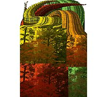 Falling Into Fall Photographic Print