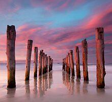 Dunedin by Josh Gudde