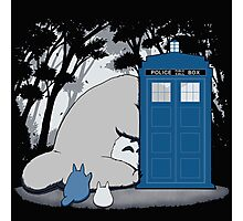 Totoro Dr Who Photographic Print