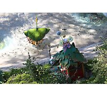 Pixie Hollow Photographic Print