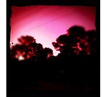 slumbering Photographic Print