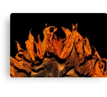 Flame on! Canvas Print