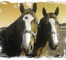 A Beautiful Pair by Diane Johnson-Mosley