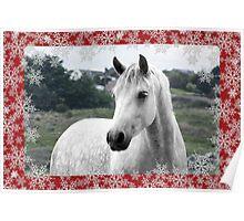 Connemara Pony Christmas Card - Type 3 Poster