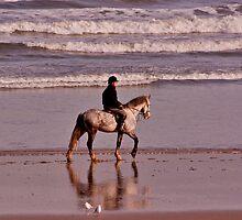On The Beach by Trevor Kersley