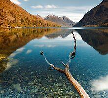 Lake Gunn by Rodel Joselito B.  Manabat