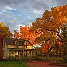 Autumn in Corrales, New Mexico by Mitchell Tillison