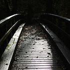 Footbridge over the River Mole by lukasdf