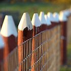 Fence Posts by Heather Pickard