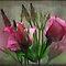 Flowers in Redfield effect