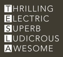 TESLA - Thrilling, Electric, Superb, Ludicrous, Awesome by surfaren