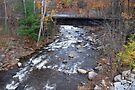 Glen Creek by John Schneider