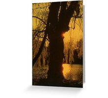 A Tree Greeting Card