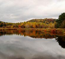 Autumn Pond by Karen Karl