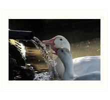 My Water, Your Water - Our Water Art Print