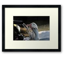 My Water, Your Water - Our Water Framed Print