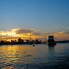 Balboa Boat by Petrea Burchard