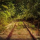 Ghost Rails by Lisa Holmgreen