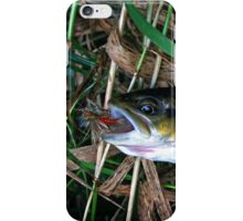 """""""Brown Trout Blues iPhone case iPhone Case/Skin"""