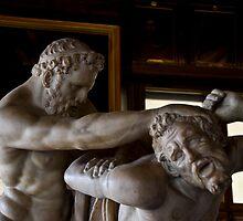 The still fighters by Federico Del Monte