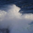 A Mighty Wave by MaryinMaine