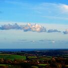 CORNWALL COUNTRYSIDE by AndyReeve