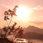 Mekong Sunset by JustLikeKat