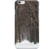 """A Snowy Nuns' Walk"" iPhone case iPhone Case/Skin"