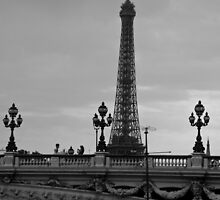 Eiffel Tower at Dusk by tunna