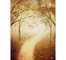 Amanda's Path Photographic Print