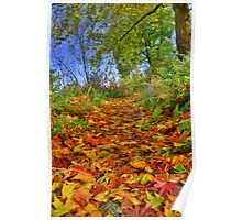 Devon: Pathway to Autumn Poster