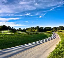 Shadows of a Fence by Greg Booher